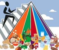feature-fc-foodpyramid